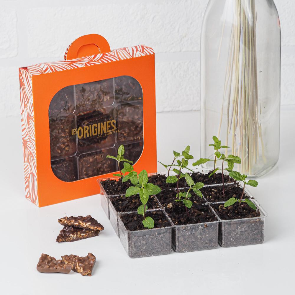 boîte de chocolats Marcos et plantes